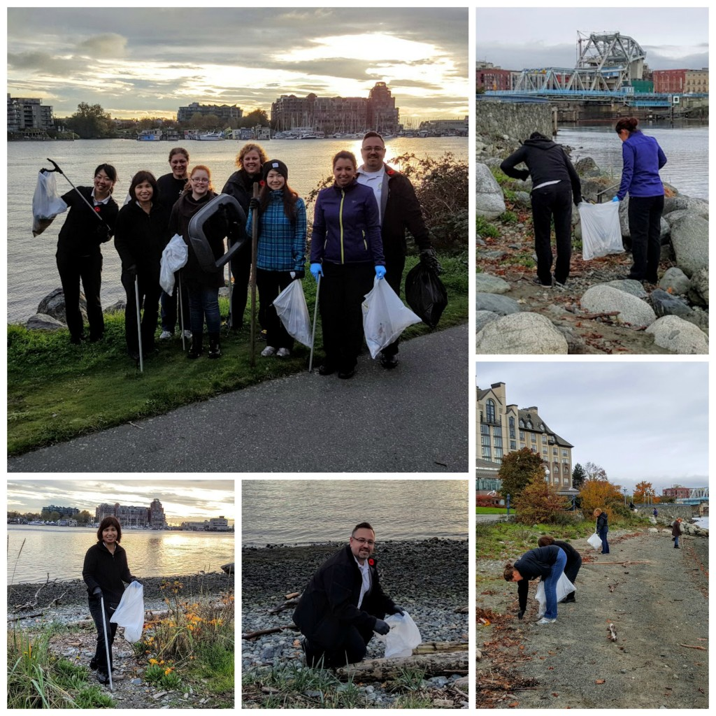 Shoreline cleanup collage